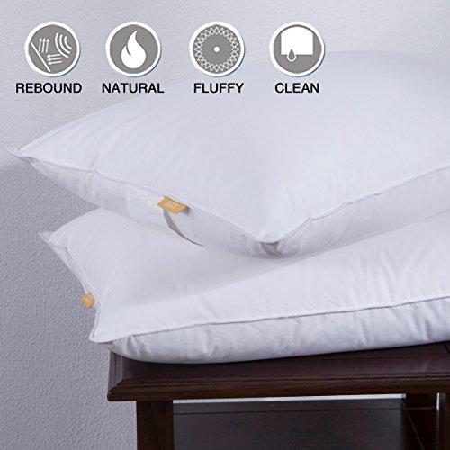 Puredown Goose Down White Feather Pillow