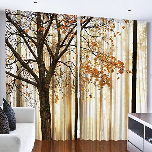 Top 10 Best Curtains For Living Room Hovementcom
