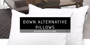 Best Down Alternative Pillows