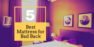 Best Mattress for Bad Back