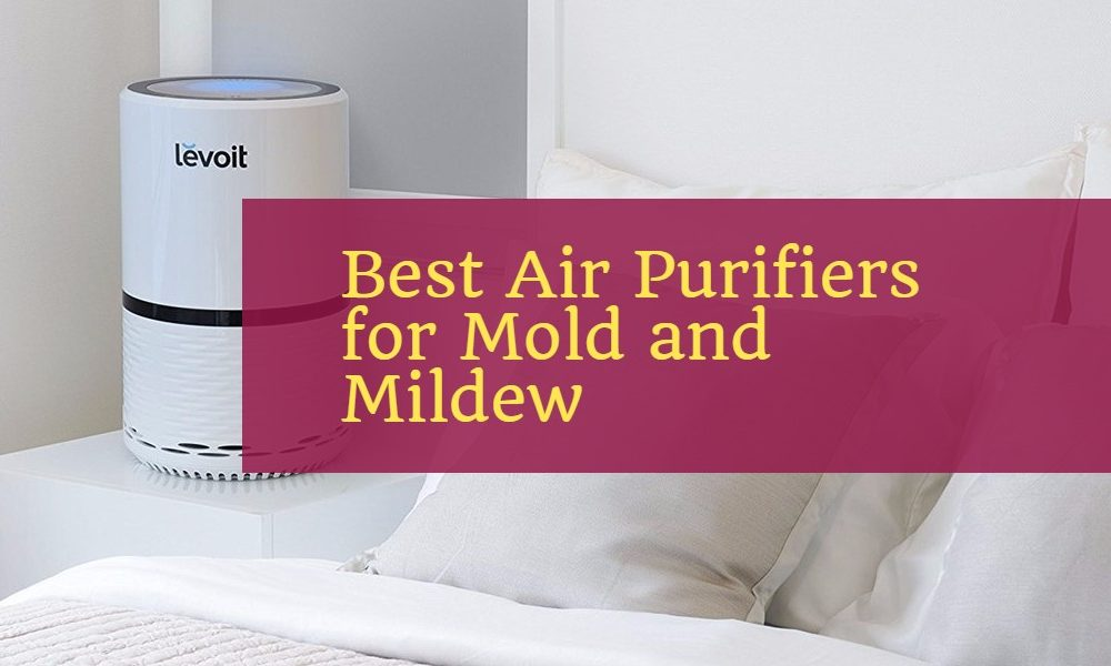V Hepa Plus Air Purifier The Air Cleaner For Bedrooms Image Collections Diagram Writing Sample