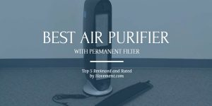 Best Air Purifier with Permanent Filter