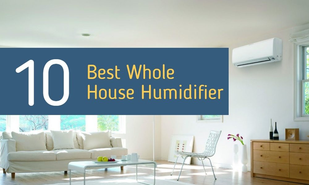 Best Whole House Humidifier Reviews