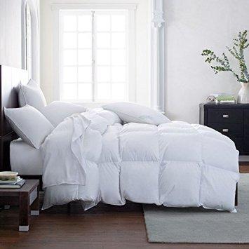 Comforter Duvet Insert